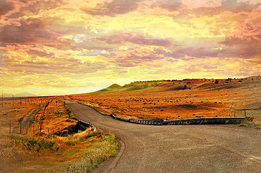 Marty Koch - The Road Less Trraveled Sunset