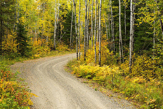 The Road to Bob Bay by Adam Pender