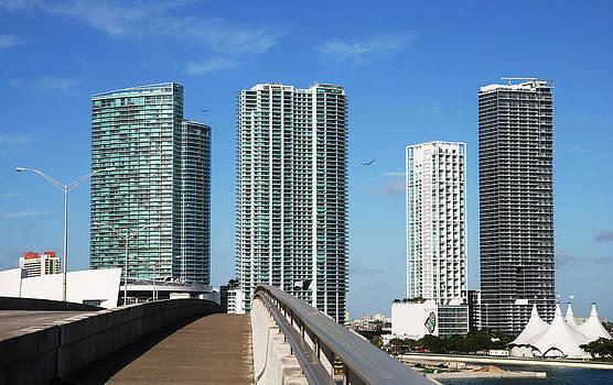 Ramunas Bruzas - The Road To Miami