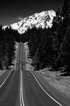 The Road to Mt Shasta by Tom Wenger