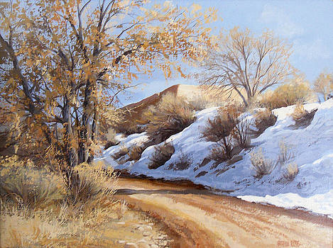 The Road up in snow by Patricia Rose