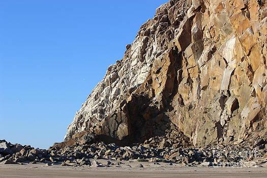 The Rock by Erik Barker