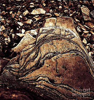 The Rock by James  Dierker