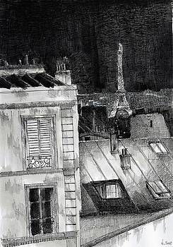 The roofs of Paris by Nicolas Jolly
