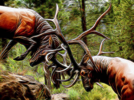 The Rut by William Horden