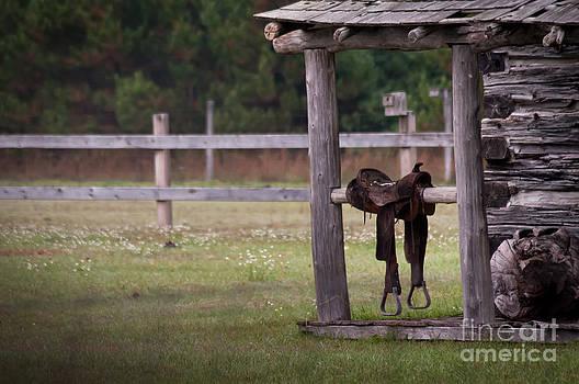 The Saddle by Jennifer Englehardt