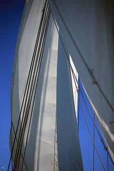 Karol Livote - The Sails