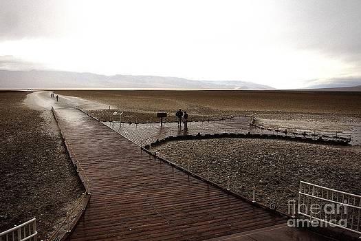 Andrew Brooks - The Salt Flat Entrance