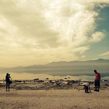 The Salton Sea.  some Things Are by Tifanie Chaney