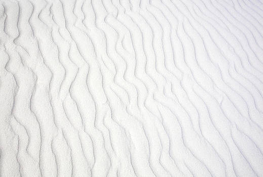 Ramunas Bruzas - The Sand