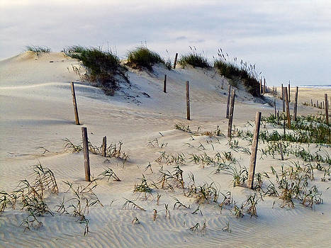 The Sands of OBX II by Greg Reed