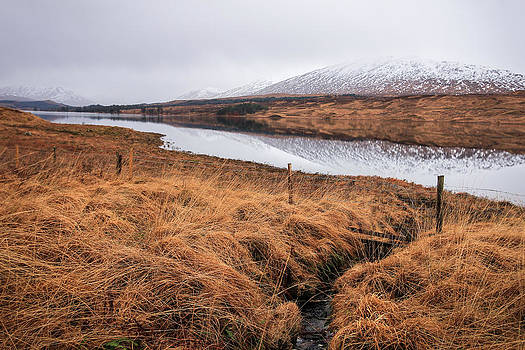 The Scottish Highlands  by Arianna Petrovan