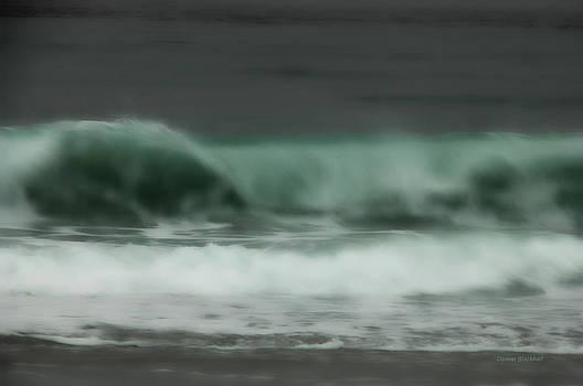 Donna Blackhall - The Sea Beckons