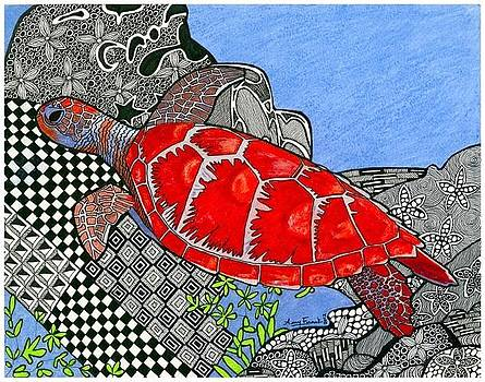 The Sea Turtle by Amy Frank