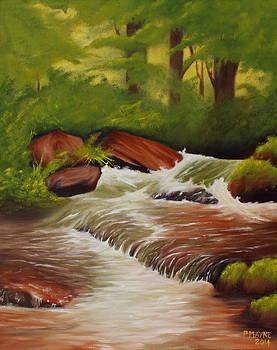The Shallow Stream by Patrick Mayne