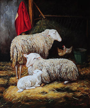 The sheepfold by Lin Custodis