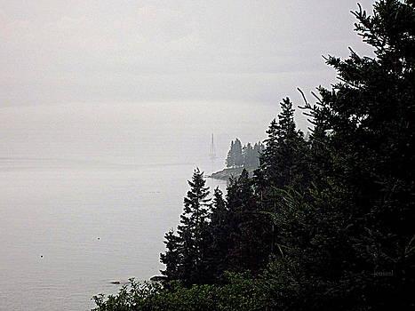 The Ship in the Fog  by Jen Seel