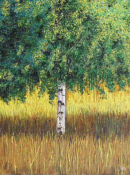 The Silver Birch by John Hebb