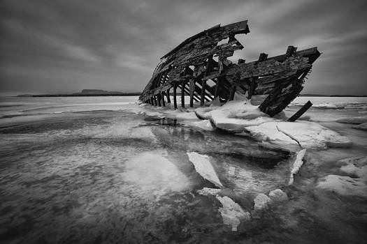 The Skeleton by Jakub Sisak