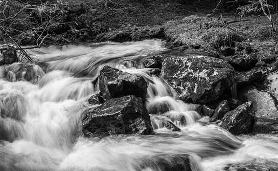 Thomas Schreiter - the small river