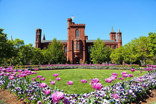 The Smithsonian by Scott Fracasso