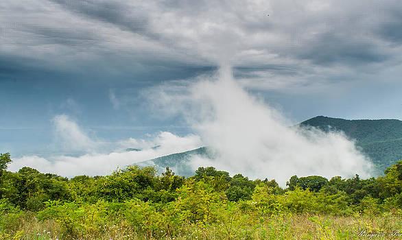 The smoke by Ranjana Pai