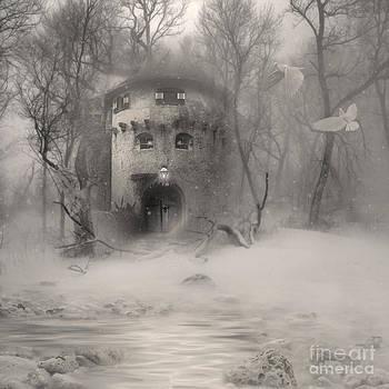 The Snow Castle by Lynn Jackson