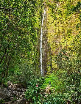 Jamie Pham - The spectacular and large Waimoku Falls in Maui.