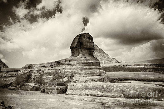 Sophie McAulay - The Sphinx sepia toned