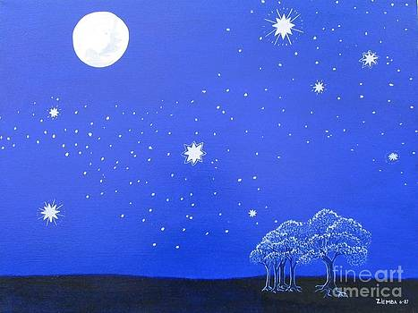 The Starry Night by Lori Ziemba