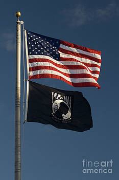 The Stars and Stripes and POW Flags Fly by Lauren Brice
