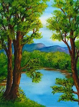 The Still Blue by Catherine Jeffrey