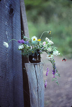 The Still Life of Wild Flowers by Patricia Keller