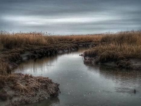 The Stillness Calms Me by Malcolm Van Atta III