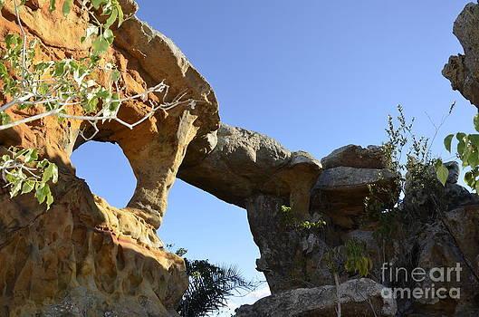 The Stone Bridge by Adelmo Leite de Sa