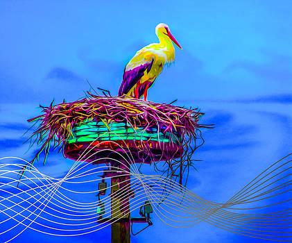 Algirdas Lukas - The Stork 16 02 2015