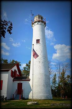 The Sturgeon Point Lighthouse by Terri K Designs