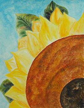 Donna Blackhall - The Sun Has Risen