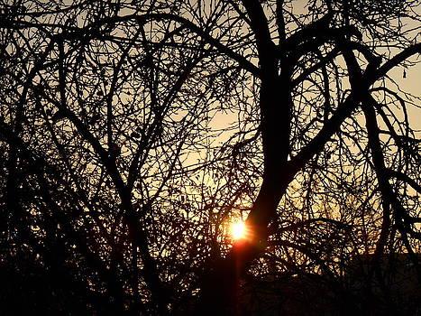 Yuriy Vekshinskiy - The sun rises