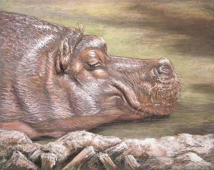 The Sunbather Hippopotamus by Julie Lemons
