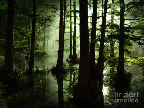 The Swamp by Roy H Wagner ASC