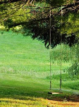 The Swing by Jean Goodwin Brooks