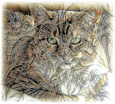 The Tapestry Cat by Kathleen Struckle