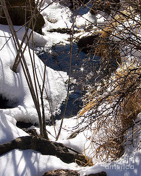 The Taryall River in Winter by Laurie Klein
