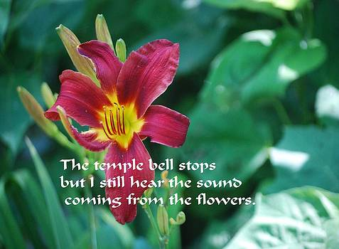 Gary Wonning - The Temple Bell