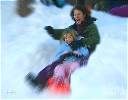 Anthony Forster - The Toboggan Ride