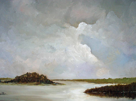 The Tomoka River by Carol Thornton