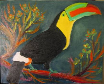 The Toucan by M Bhatt
