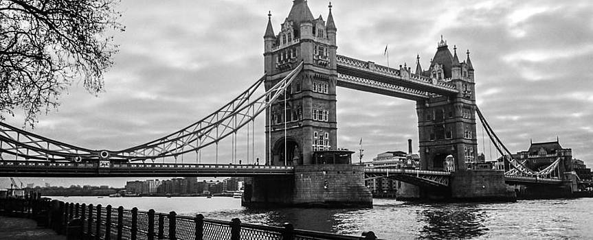 The Tower Bridge  by Steven  Taylor