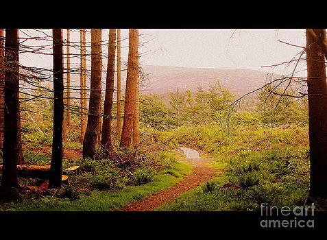The Trail by John Morris